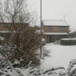 Snow 2013-01-18