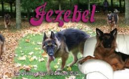 To Jezzie